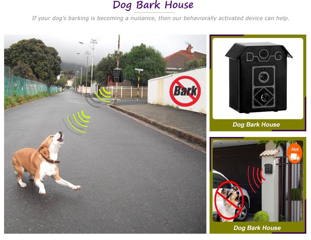 Stop Dog Barking At Birds