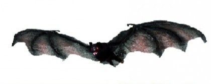 Ultrasonic Bats Repeller
