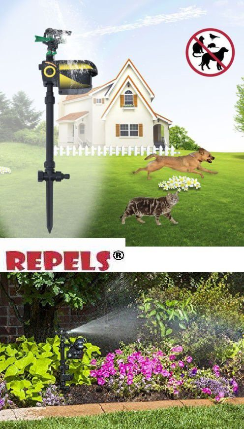 Scarecrow Sprinkler Automatic Outdoor Cats And Dogs